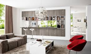 ideas kitchen living room divider ideas
