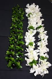 kukui nut and mock orange leaf lei u0026 white dendrobium orchid and