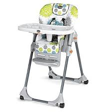 Feeding Chair For Baby India Amazon Com Chicco Polly High Chair Zest Baby