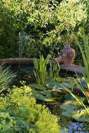 682 best pond life u0026 water features images on pinterest