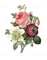 flower clip art vector images u0026 illustrations istock
