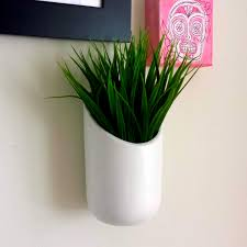 plants for decorating home potted plants for interior decoration at modern house flower