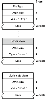 format file atom overview of qtff