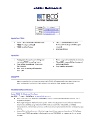 resume samples for fmcg sales manager professional resumes