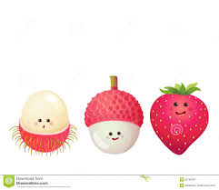 lychee fruit drawing lychee stock illustrations u2013 720 lychee stock illustrations
