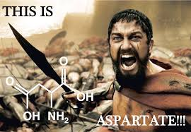 This Is Sparta Meme - this is asparta te this is sparta know your meme