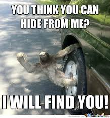 Can You Not Meme - you think you can out run a sloth by recyclebin meme center