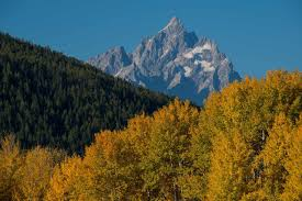 grand teton national park things to do in fall in grand teton national park
