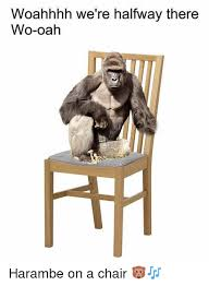 Halfway There Meme - woahhhh we re halfway there wo oah harambe on a chair meme