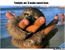Make A Sloth Meme - sweet baby sloth by cnille meme center