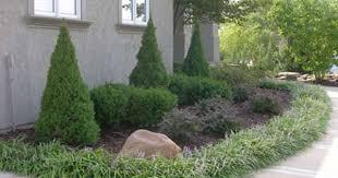 Low Maintenance Plants And Flowers - 132 best low maintenance landscape images on pinterest
