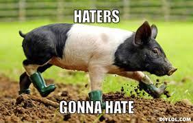 Haters Gonna Hate Meme Generator - babe pig memes image memes at relatably com
