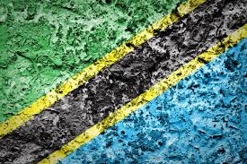 Tanzinia Flag Tanzania Flag On Grunge Wall Stock Photo Picture And Royalty Free