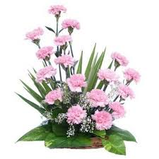 basket arrangements basket arrangement of 20 pink carnations myflowergift