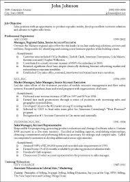 Professional Format Resume Best Chosen Resume Format Resume For Job Application Format