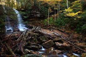 West Virginia forest images File wv forest waterfall fall foliage logs rocks west virginia jpg