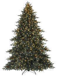 a picture of a christmas tree abc cartoonabc cartoon