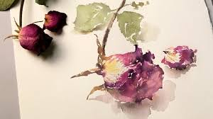 dried roses dried watercolor speed painting