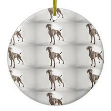 weimaraner design oval ornament check this awesome