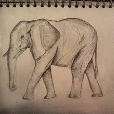 gallery pencil sketch images of elephants drawing art gallery