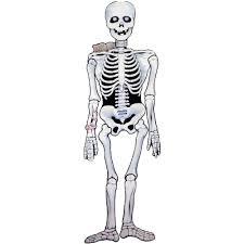 spooky skeleton png bat template halloween spectacular pinterest bat template