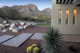 phoenix desert landscaping ideas landscape southwestern with