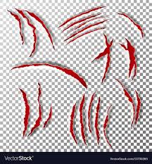 claws scratches claw scratch or vector image