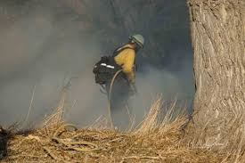 firefighter 1 study guide firefighter health u2013 wildfire today