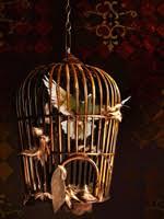 uccelli in gabbia un uccello in gabbia fusione degli oggetti con akvis chameleon