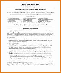 it manager resume examples resume example and free resume maker