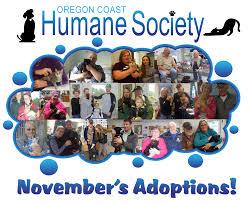 Coos Bay Oregon Craigslist by Oregon Coast Humane Society A No Kill Facility