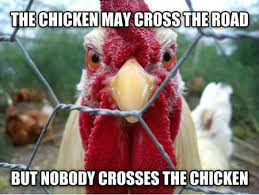 Chicken Memes - funny memes the chicken may cross the road now that s