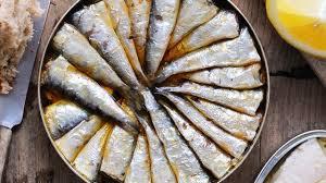 cuisiner les sardines nos meilleures recettes avec des sardines l express styles