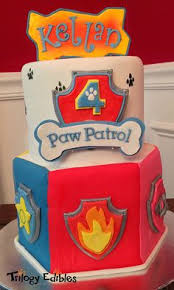 paw patrol cake marshall codys 4th