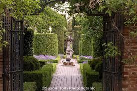 holt 287 6134 tif photobotanic stock photography garden library