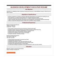business development executive resume business development executive resume sle best format