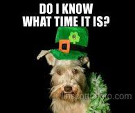 St Pattys Day Meme - st patricks day memes pictures photos images and pics for