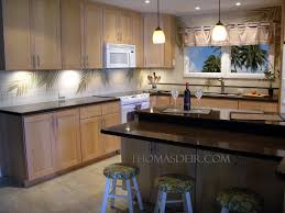 kitchen remodel coconut tree and palm fronds u2013 thomas deir