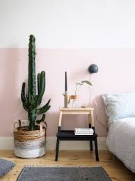 plant for bedroom 1 pflanze 3 stylings u2013 ein kaktus auf reisen urban plants and