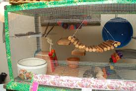 How Much Is A Hamster Cage Home Made Tank Topper Hammy Happenings