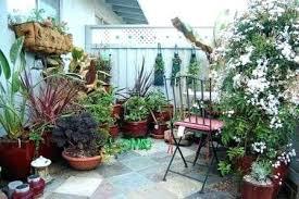 small garden spaces photos space gardening ideas free people