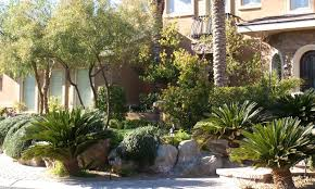 23 outstanding arizona backyard landscape packages u2013 izvipi com