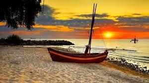 jeep beach wallpaper beach birds boat morning sunset tree wallpaper hd beach