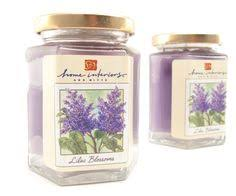 home interiors candles catalog ashland peppermint cyprus 18 oz large scented jar candle jar