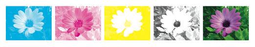 Pantone Yellow by Design 101 Understanding Pantones Cmyk U0026 Rgb