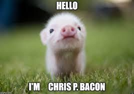 Hello Meme Funny - crispy bacon imgflip