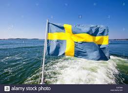 100 swedish colors man with a swedish flag stock photo