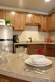 bathroom awesome vetrazzo with elegant kitchen cabinet storage