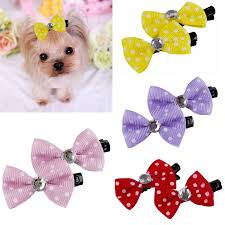 hair accessories for yorkie poos 26 best yorkies images on pinterest yorkshire terriers yorkie