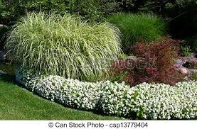 ornamental grass formal garden landscape with green lush